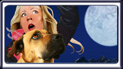 Search Dog's Raven poster, photo of handler and her search dog cringing in terror.